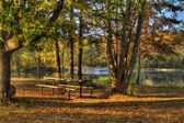 Hdr paisaje de un bosque y un estanque. — Foto de Stock