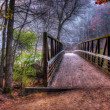 图库照片: Creek and Bridge in HDR in soft focus
