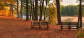 Hdr yumuşak odak renkli doğal peyzaj — Stok fotoğraf