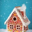 Homemade gingerbread house — Stock Photo #13451135