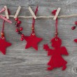 Christmas decoration — Stock Photo #13896117