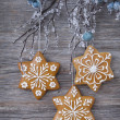 Snowflake gingerbread cookies — Stock Photo #16247191