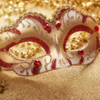 Carnival mask — Stock Photo #18221203