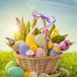 Basket with easter eggs — Stockfoto #18413705