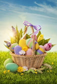 Basket with easter eggs — Stock fotografie