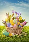 Basket with easter eggs — Φωτογραφία Αρχείου