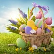 Basket with easter eggs — Stock Photo #18504057
