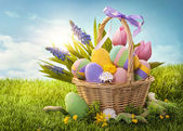 Basket with easter eggs — Stok fotoğraf