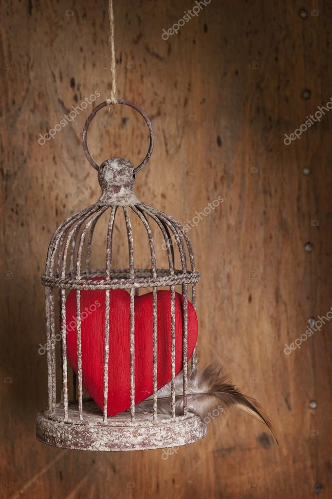 Red heart closed in a metal cage — Stock Photo #19566431