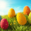 Easter eggs — Stock Photo #19673055