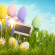 Easter eggs — Stockfoto #20920995