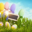 Easter eggs — Foto Stock #20920995