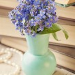 Stock Photo: Forget me not