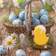 Easter cookie and blue eggs — Stock Photo #22534415