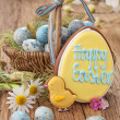 Colorful easter cookies — Stock Photo #22575185