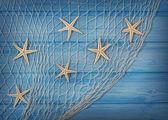 Seastars on the fishing net — Stock Photo