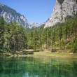 Stock Photo: Green Lake in Styria