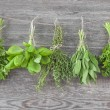 Fresh herbs hanging — Stock Photo #29440771