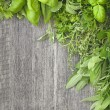 Fresh herbs over grey wooden — Stock Photo #29440963