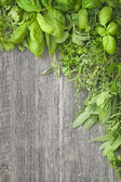 Fresh herbs over grey wooden — Stock Photo