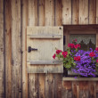 Old wooden window — Stock Photo #29795287