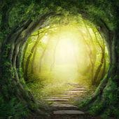 在黑暗的森林中道 — 图库照片