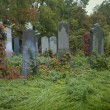 Stock Photo: Old jewish cemetery