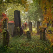 Old jewish cemetery — Stock Photo #33012659