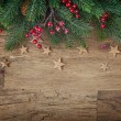 Christmas fir tree — Stock Photo #33725957