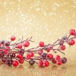 Christmas decoration — Stock Photo #33954673