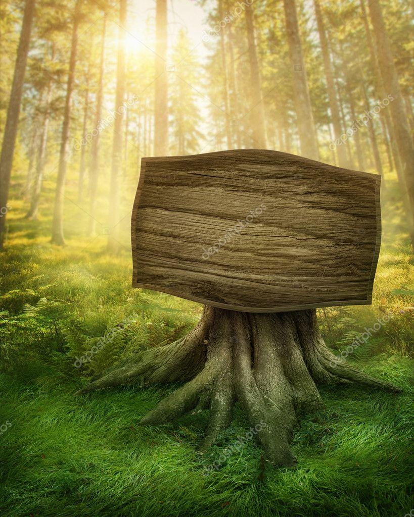 Фотообои Деревянный знак в лесу