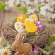 Colorful easter cookies — Stock Photo