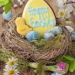 colorful easter cookies — Stock Photo #38341181