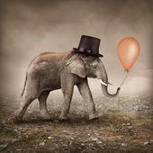 Elephant with a balloon — Stock Photo
