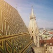 St.stephen's cathedral in Vienna — Stock Photo