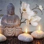 Buddha — Stock Photo #45457301