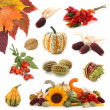 Autumn collection — Stock Photo #5451345