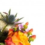 Flower card — Stock Photo