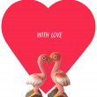 Flamingo love — Stock Photo