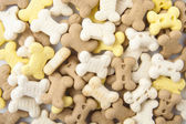Dog cookies — Stock Photo