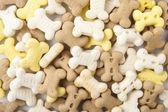 Köpek kurabiyesi — Stok fotoğraf