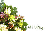 Beautiful bouquet — Stockfoto