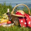 Picnic time — Stock Photo #46598115