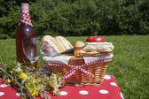 Picknick tijd — Stockfoto
