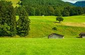 Alps — Foto de Stock