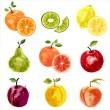 Fruit set 2 — Stock Vector