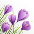 Crocuses. Five paper flowers on white background — Stock Vector