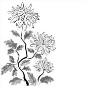Chinese chrysanthemum. Ink painting — Stock Vector