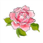 розовая роза — Cтоковый вектор