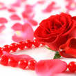 Red rose and petals with heart ans beads isolated — Stock Photo